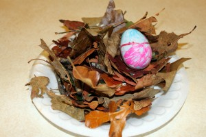 Nest with leaves, twigs and liquid starch