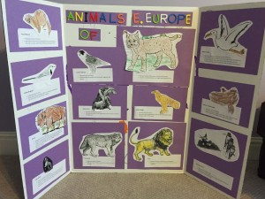 Animals of Eastern Europe by Arjun
