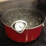 Boiling water - note the temperature
