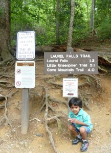 Laurel Falls Trail in Smoky Mountain National Park